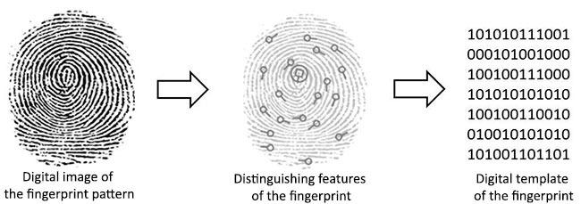 بصمة ماسحات تحليل Encoding.png