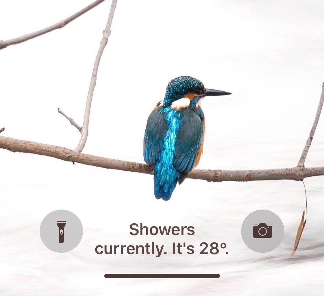 """يحل هذا القرص محل نص """"فتح سريع لفتح"""" جهاز iPhone الخاص بك بمعلومات الطقس 2"""