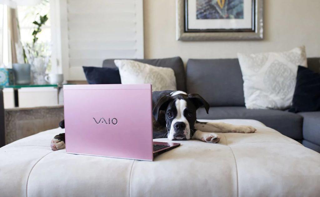 أفضل أجهزة الكمبيوتر المحمولة التي يمكنك شراؤها في 2019 - VAIO SX12 01