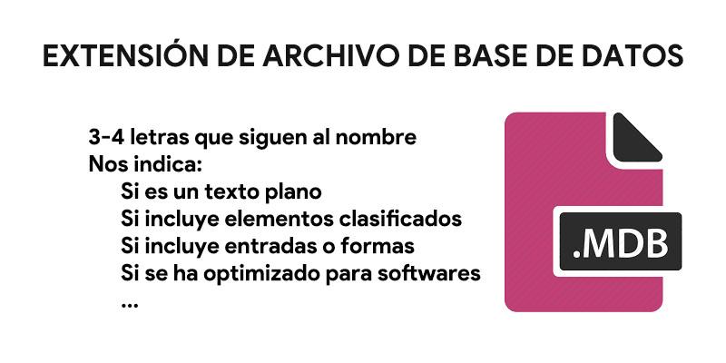 تنسيقات ملفات قاعدة البيانات