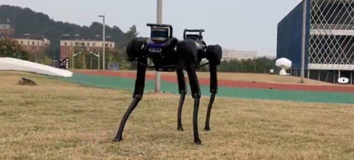 شاهد روبوتًا على شكل كلب يستيقظ بعد السقوط القسري 1